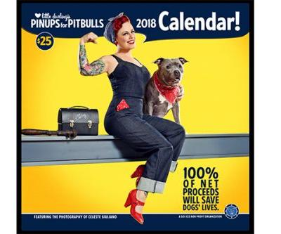 8 Dog Calendars to Ring In 2018