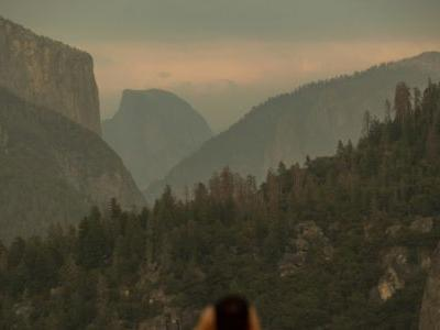 Business owners, visitors rejoice as Yosemite reopens