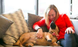 Woman's Transformation From Wall Street Lawyer To Dog Rescue Warrior Saves Lives