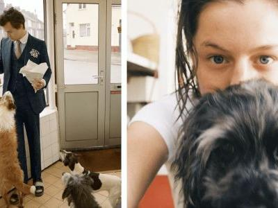 Harry Styles Refuses To Watch Emma Corrin's Dog For Bizarre Reason
