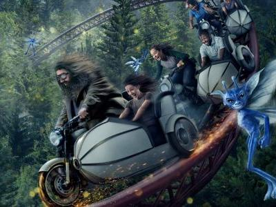 Harry Potter Fans Wait in 10 Hour Line for New Hagrid Ride at Universal Studios