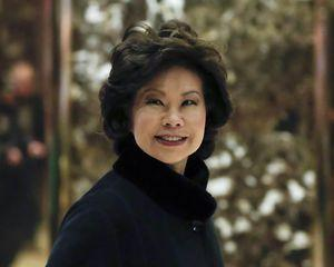 The Latest: Trump picks Chao for transportation secretary