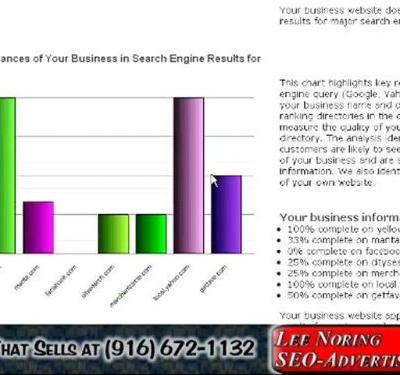 SEO-Search Engine Optimization Google Search Page 1 Results