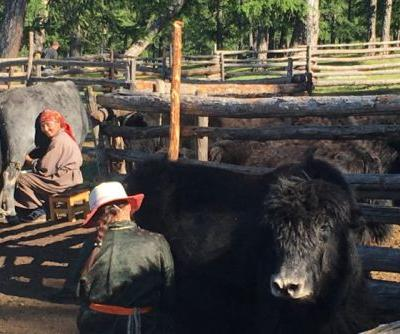 Mongolia, Cheese, and the Future of Dairy in the Era of Climate Change