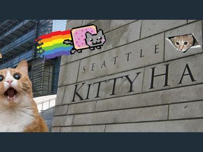 "Want to cuddle a kitten? Come to ""Kitty Hall"" on Thursday, Aug. 30"
