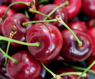 Drinking tart cherry juice may improve gut health, says new study