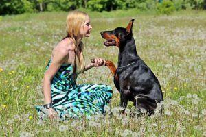 6 Ways To Tell Your Dog You Love Them in 'Doggie Language'