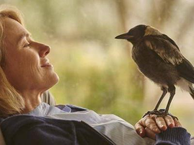 Naomi Watts Was Not A Huge Fan Of Birds Before Working With Magpies In Netflix's Penguin Bloom