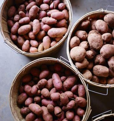 How to Peel Potatoes in Seconds with This Easy Kitchen Hack