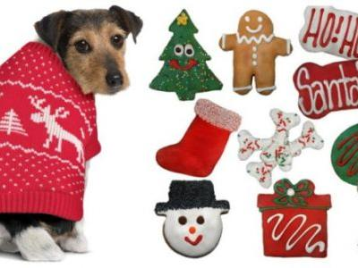 These Gifts Are Perfect For Your Friend Who Has Fur Babies