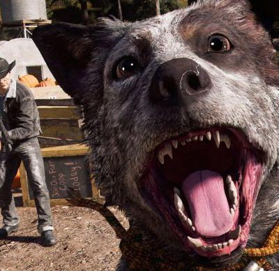 Far Cry 5 gets a much-needed photo mode