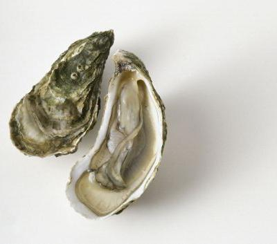 Florida man dies after eating oyster tainted with 'flesh-eating' bacteria
