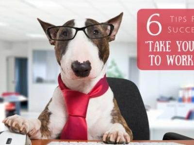 "6 Tips For A Successful ""Take Your Dog to Work Day"""