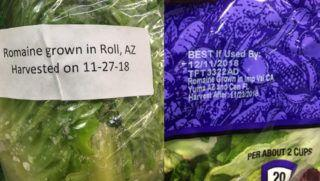 More romaine victims reported - FDA says look to industry for change; industry says additional study needed