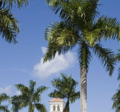 What's Going On With Tourist Deaths In The Dominican Republic?