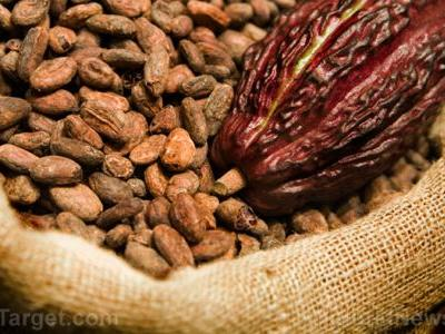 Eat your way to better health with cacao and maca