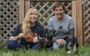 A Pawesome Act Of Fate Brings Transplant Patient And Her Donor Together