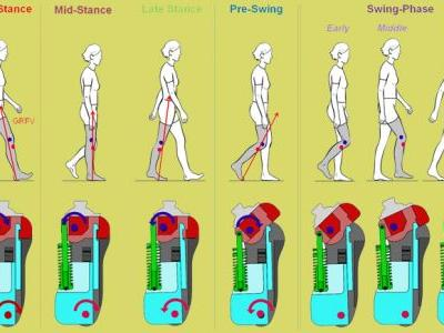 A New Modeling Method to Characterize the Stance Control Function of Prosthetic Knee Joints