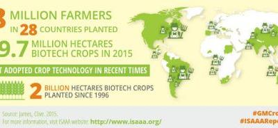 2015 Marks Two Billion Hectares of Biotech Crop Plantings