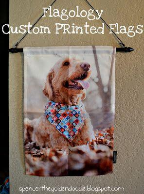Flagology - Custom Printed Flags - Review