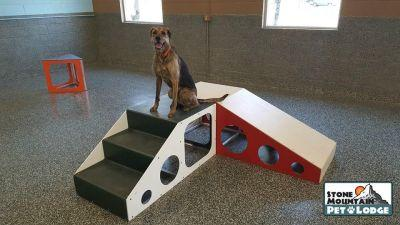 Your Dogs Will Adore This Innovative Daycare And Lodging Spot