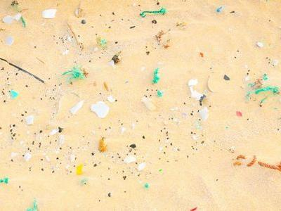 Microplastics Detected in Human Feces