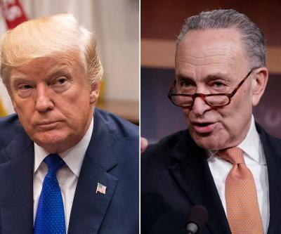Schumer: Shutdown talks with Trump are like 'negotiating with Jello'