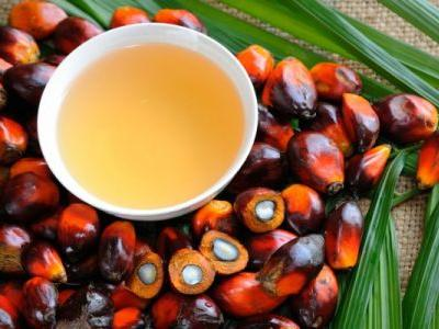 Is Palm Oil Healthier Than Coconut Oil? Is It Eco-Friendly? We Asked An Expert All Of Our Burning Questions