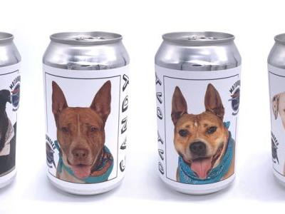 Brewery puts shelter pups on beer cans to find them a home