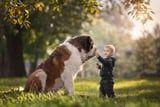 These Photos of Little Kids With Their Giant Dogs Are Actually Everything We Dream Of