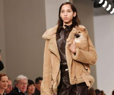 Models walked the Tod's runway with puppies at Milan Fashion Week