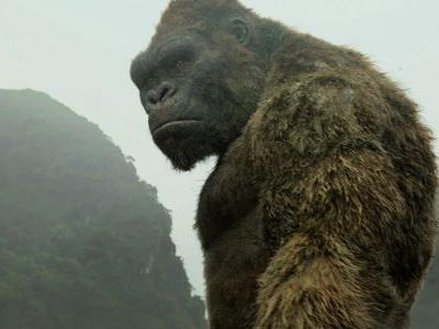 Netflix and Legendary Announce New KING KONG and TOMB RAIDER Anime Shows