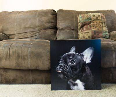 I love my photos so much, I painted our family room so I could