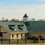 Could Your Barn Be Harming Your Horse's Health?