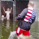 This Man Rescued 6 Dogs Trapped in Cages During Hurricane Florence, and Thank God