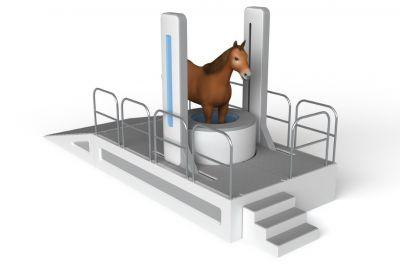 Madison Startup Asto Tests Its CT Scanner on a Standing Horse