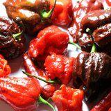 OMG: A Man Ate the Hottest Pepper in the World and Ended Up in the Emergency Room