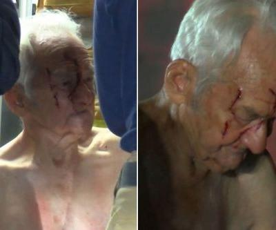 Elderly man attacked by bear while sleeping on hiking trail