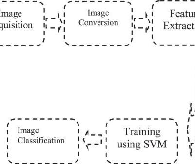 Feature Extraction Based Machine Learning for Human Burn Diagnosis From Burn Images