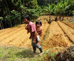 Forests Can Improve Kids' Diets: Here's How