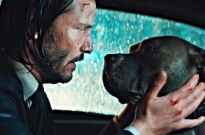 First John Wick 3: Parabellum Clip Promises the Dog Is SafeA new
