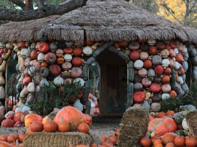 Grab That Spiced Latte and Head to the Best Pumpkin Festivals in America