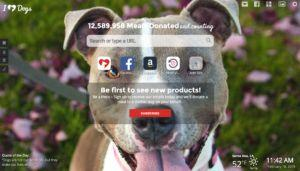 This Google Chrome Add-On Is FREE and Feeds Shelter Dogs Monthly