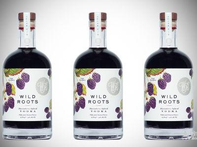 Vodka Tasting Party by Wild Roots Spirits