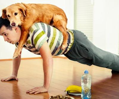 Dog Exercise - How Much Activity Your Dog Needs a Day By Breed, Age and More