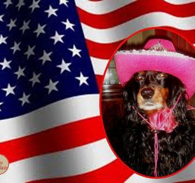 Hello Everyone and Happy 4th of July