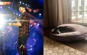 Luke Bryan Adopts Senior Shelter Dog