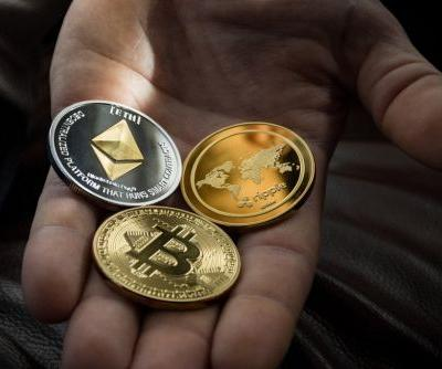 Cryptocurrency Price Drop: Bitcoin, Ether Value Falls Over the Weekend, Dogecoin Remains in Stock Hype