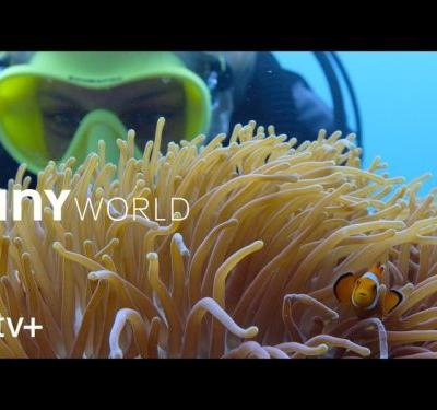 'Filming Inside the Reef' takes you behind the scenes of 'Tiny World'