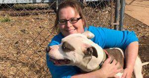 After Town Outlaws Tethering, Animal Group Helps Build Kennels and Relocate Dogs